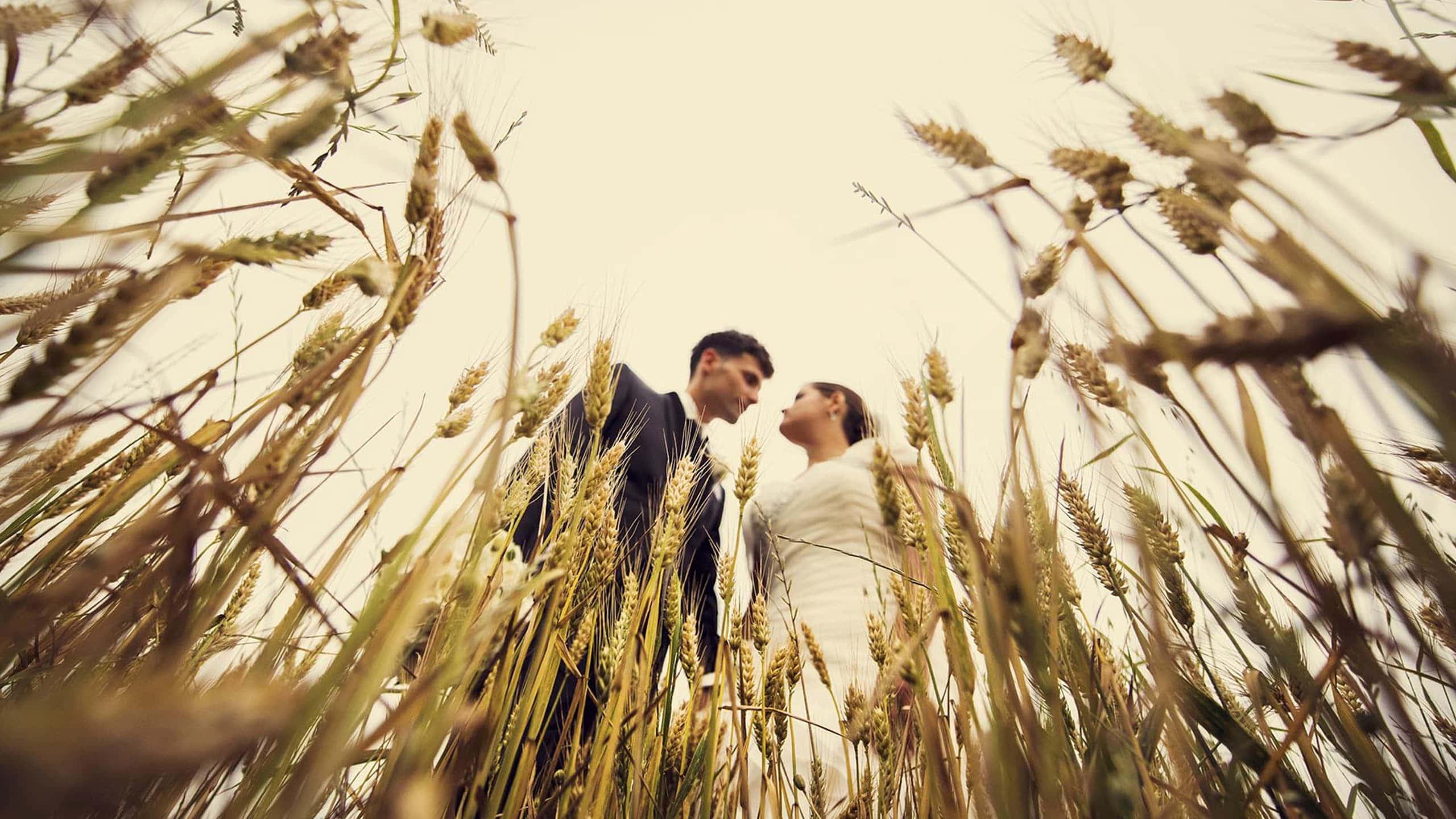 Coppia di sposi in campagna